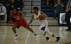 Basketball Playoff Preview