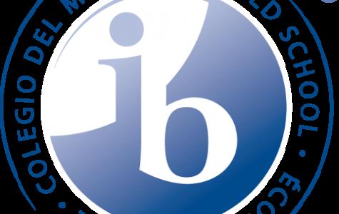 IB the New Kid