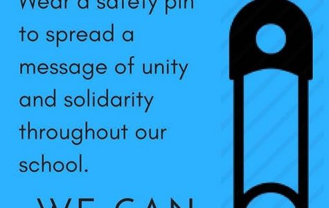 Safety Pins for Solidarity offers support to those affected by Executive Order 13769.