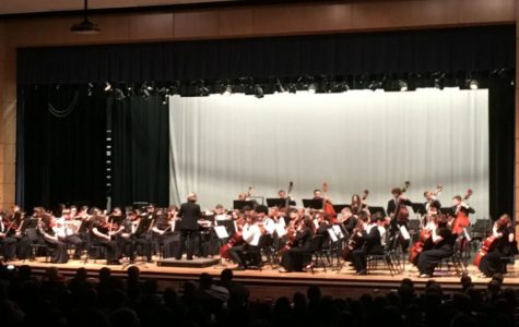 All-Virginia Orchestra of 2017 proudly proclaim their musical talent.