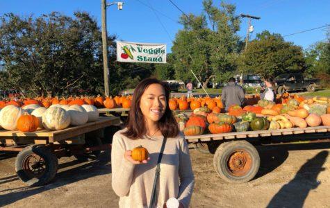Amanda Chok takes home a mini pumpkin for decoration.