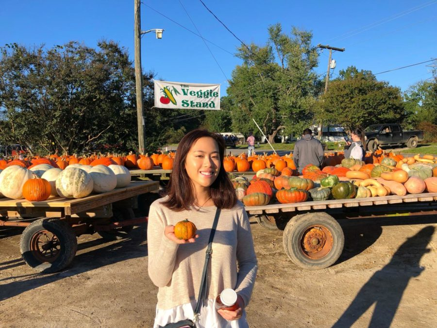 Amanda Chok takes home a mini pumpkin for decoration.