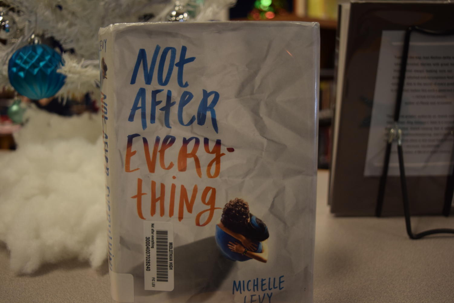 Not After Everything by Michelle Levy is an emotional novel that seeps into readers hearts.