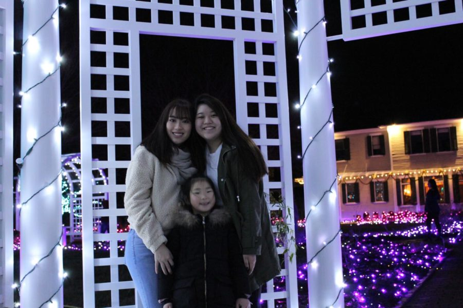 Amanda Chok and Anna Chen admire the art and lights at GardenFest 2018.