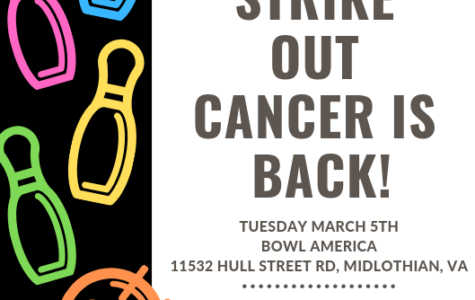 Knock Out Pins & Cancer at Strike Out Cancer