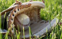 Sports Spring Into Season