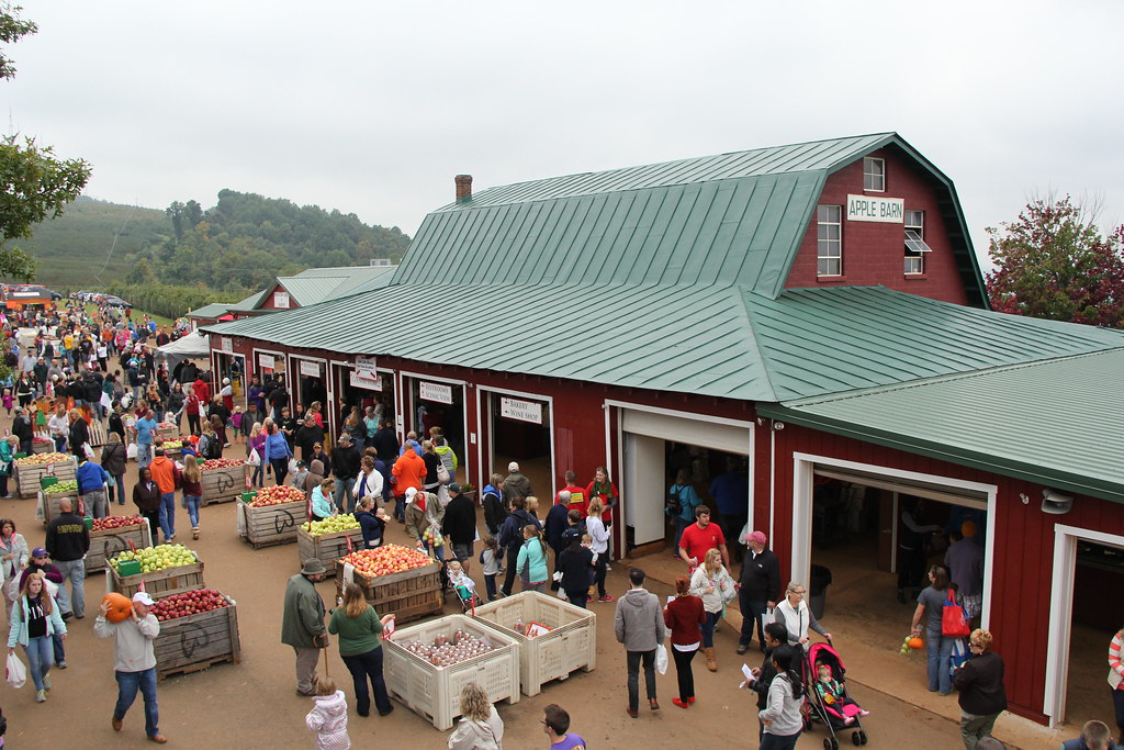 Individuals make their way up to Carter Mountain to experience the fall festivities.