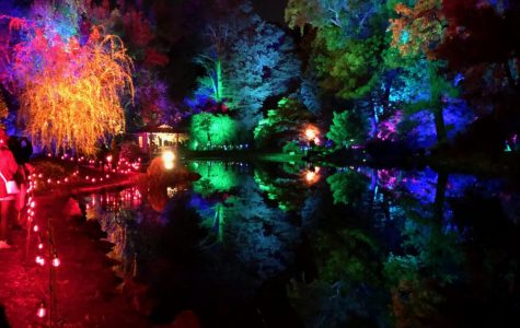 Twinkling lights create a new glow at Maymont