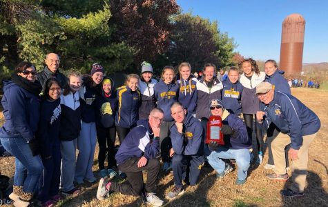 Midlo XC demonstrates strength at States