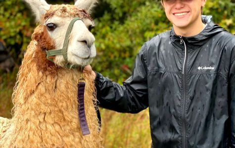 Sophomore Kyle Reeder shows off his hiking llama, Teriyaki.