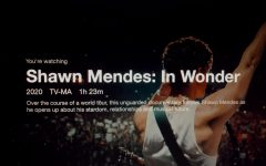 Netflix's newes release of Shawn Mendes: In Wonder offers fans a new perspective of the accomplished artist.