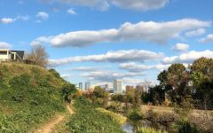 The North Bank Trail offers a serene environment within the hustle and bustle of Richmond.